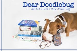 Dear Doodlebug 2