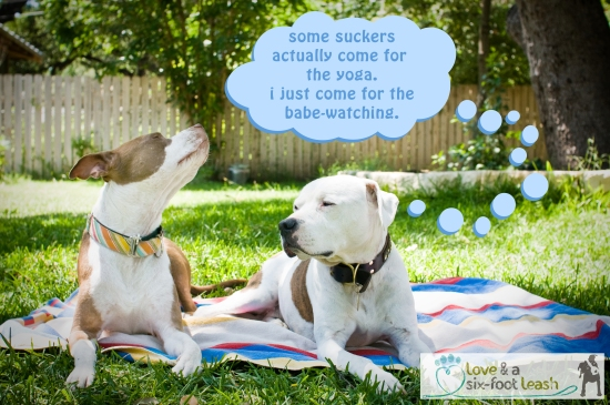 4 yoga