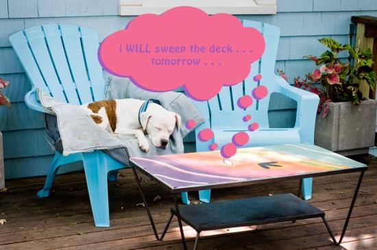 13 deck